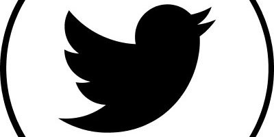 Social media icon for Twitter, bird